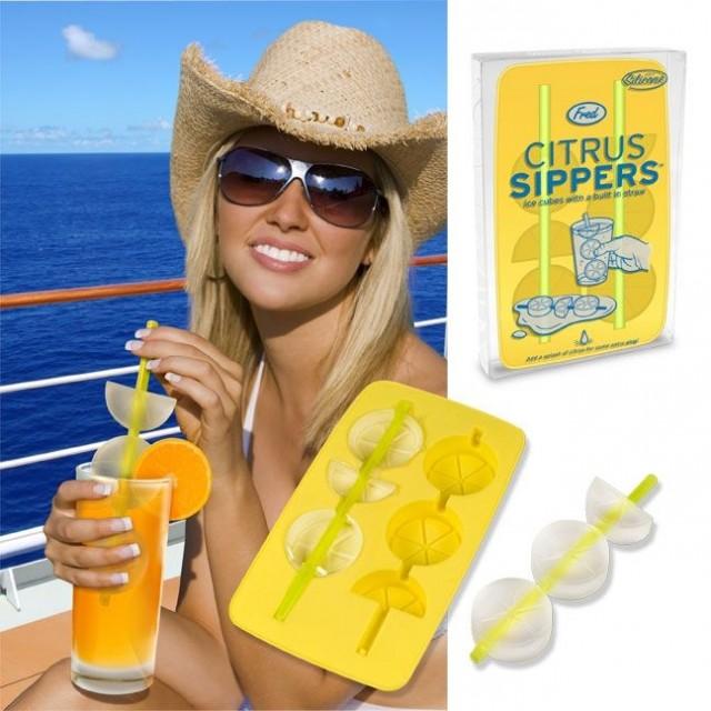 Glaçons rondelles de citron
