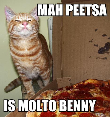 lolcatz pizza