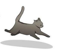 {Pic} Comment savoir si votre chat s'apprête à vous tuer