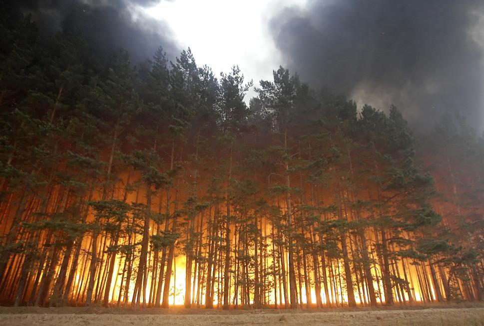 Forêt en feu en russie