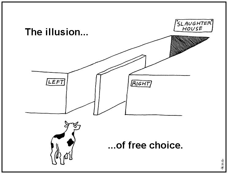 L'illusion du choix